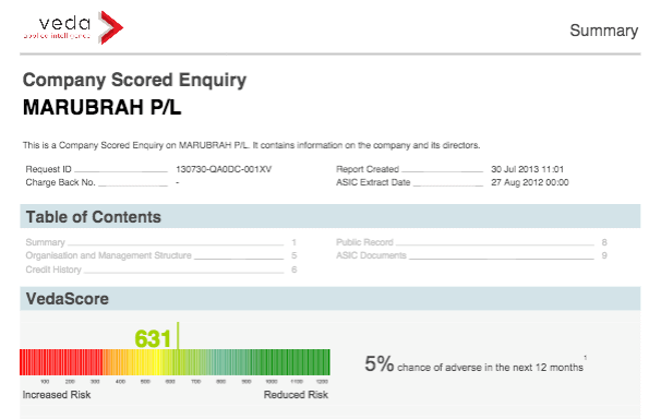 Company Credit Enquiry Report Example