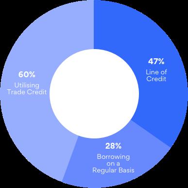 Small Businesses Utilising Credit